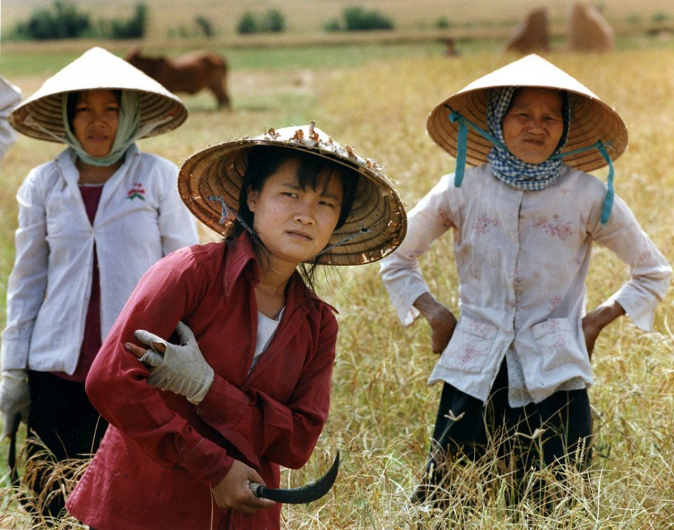 rice-women-vietnam_4946886944_l