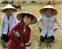 rice-women-vietnam_4946886944_l